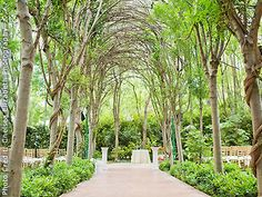 Hartley Botanica Somis Wedding Gardens Ventura wedding location 93066