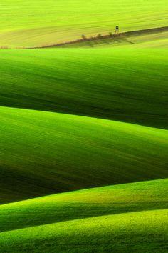 """""""Spring field..."""" by Pawel Kucharski"""