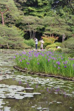 garden at the Heian Jingu (shrine) Kyoto