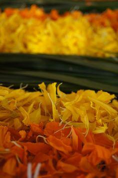 Colourful slice of mandala