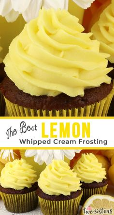 The Best Lemon Whipped Cream Frosting The Best Lemon Whipped Cream Frosting - a light and creamy frosting with just the right amount of lemon flavor. A great frosting for Spring and Summer! Perfect for when you need a frosting a little lighter than butter Lemon Recipes, Cream Recipes, Baking Recipes, Whipped Icing Recipes, Lemon Icing Recipe, Lemon Frosting, Icing Frosting, Whipped Buttercream Frosting, Wedding Cake Frosting