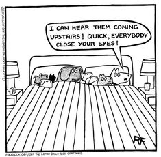 15 Times Dogs Outsmarted Humans (Comics) - I Can Has Cheezburger?