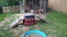Our new backyard ! Playground for the fur kids marley,chinky,bobby,penny,pepper, Chico,,peanut,romeo