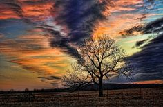 A winter morning begins as an awesome Oklahoma sunrise paints a beautiful backdrop for a lone tree along Highway 69 in eastern Oklahoma. Beautiful Sky, Beautiful Space, Pretty Photos, Beautiful Pictures, Red Sky At Morning, Sunrise Painting, Winter Scenery, Travel And Tourism, Nature Photos