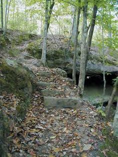 """The old Natchez Trace Trail. Mississippi.  This wsa once the """"super highway"""" between Natchez, MS and Nasville, TN.  As you walk along it you can't help but feel the history."""