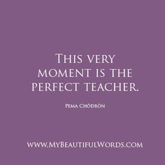 Pema Chodron. | My Beautiful Words.
