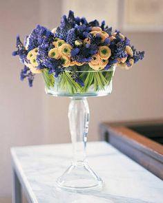 Giacinti in vaso alto di vetro
