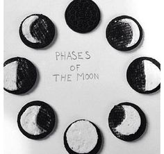 Awesome way to teach the phases of the moon!