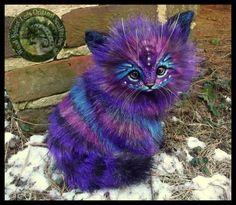 Handmade Poseable LIFE SIZED Stardust Kitten by Wood-Splitter-Lee.deviantart.com on @DeviantArt