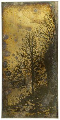 Picture of a tree by Joseph-Philibert Girault de Prangey, daguerreotype taken in 1841.