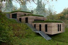 maison toit végétalisé