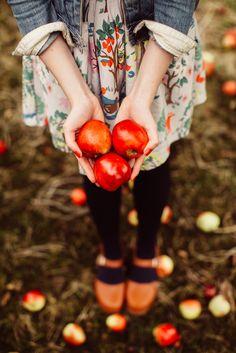 "noperfectdayforbananafish: ""(via Apple Season - A Clothes Horse) "" Apple Season, Fall Season, Autumn Day, Autumn Leaves, Fete Halloween, Autumn Aesthetic, Zooey Deschanel, Fall Photos, Autumn Inspiration"