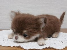 Needle felted puppy - love!~