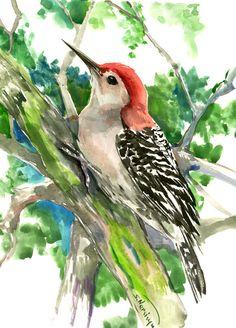 Red-Headed Woodpecker, bird art, 14 x 11 in, watercolor painting, original art, Woodland, wild birds by ORIGINALONLY on Etsy https://www.etsy.com/listing/497726490/red-headed-woodpecker-bird-art-14-x-11