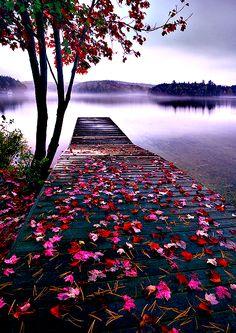 Lake Dock, Thousand Islands, Canada Beautiful Landscape Wallpaper, Scenery Wallpaper, Beautiful Landscapes, Beautiful Nature Photography, Photo Background Images, Photo Backgrounds, Photography Backgrounds, Creative Landscape, Contemporary Landscape