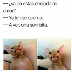 23 Ideas For Memes En Espanol Risa Adultos Humor