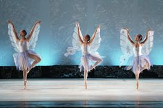 Ballet-2 | Flickr - Photo Sharing!
