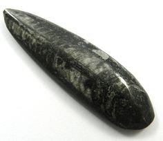 64.25CT Excellent Quality NATURAL ORTHOCERAS FOSSIL 64x19mm Pear Loose Gemstone #Handmade