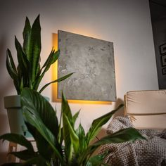sconce link in bio🖤 Concrete Light, Exposed Concrete, Concrete Texture, Concrete Lamp, Concrete Design, Above Bed Decor, Modern Wall Sconces, Extra Large Wall Art, Modern House Design