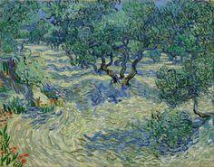 Olive grove - Vincent van Gogh - 1889