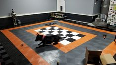 We love it when customers send us pictures of their garages. We love it even more when those photos also include dogs! Garage Floor Tiles, Tile Floor, Garage Floor Coatings, Cool Garages, Toolbox, Creepers, Dog Photos, Cute Dogs, Period