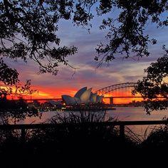 Sunset #Sydney  #Australia by junyi0812 (instagram)