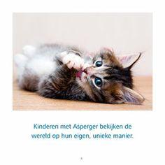 katten_asperger_binnenwerk-8