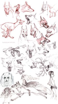 Sketch dump by fukari on deviantart animal drawings sketches Animal Sketches, Animal Drawings, Drawing Sketches, Cool Drawings, Drawing Poses, Poses References, Furry Drawing, Anatomy Drawing, Art Reference Poses
