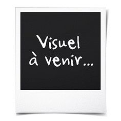 Perruque noire de chanteur disco M/L - Achat / Vente chapeau - perruque Perruque noire de chanteur - Cdiscount