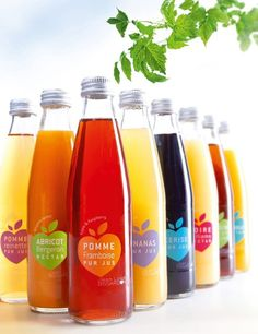 Jean-Louis Bissardon - The Dieline - A beautiful designed line of juices, by France based Caracas.