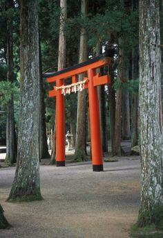 Beautiful red Torii