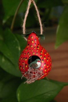 Strawberry Red Gourd Birdhouse Gourd Ornament by myladyofgourds, $15.00