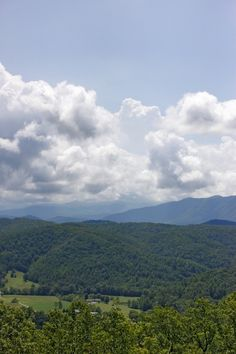 The Smoky Mountains. God's Beautiful Creation. #Smoky #Mountains #National #Park #Smokies #Tennessee #vacation #wildlife