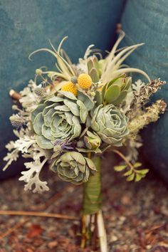 Succulents, dusty miller, and xerographica: http://www.stylemepretty.com/2015/04/21/20-green-bouquets-for-earth-day/