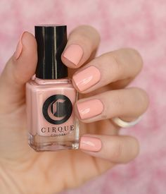 Lox and Sable (Spring/Summer Metropolis Collection 2016 - Cirque Colors)