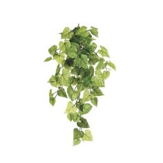 Potato foliage, 28'' Green Plants, Artificial Plants, Decoration, Houseplants, Potatoes, Herbs, Leaves, Amp, Products