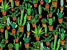 11 Succulent Fabric Patterns. On #spoonflower