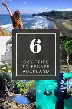 6 Day Trips to Escape Auckland! Get out of the city and experience everything that the Auckland region has to offer!