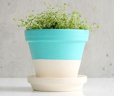 Painted Planter Pots • Lots of great Ideas  Tutorials! • Including this project from dellie.