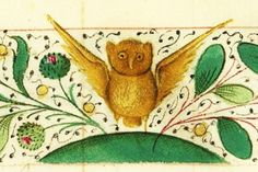 It's About Time: Illuminated Manuscripts - Creatures