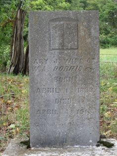 Born in 1 Apr 1833 and died in 4 Apr 1916 Greenbrier, Tennessee Ary Jane Phipps Dorris Find A Grave, Ancestry