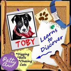 Toby is a dog on daily adventures where he understands his world through discovery learning. This fun upbeat picture book is full of doggy explorations. And it's a great educational tool for teachers as it comes with pages of ideas for classroom discussions.  This is Toby's true life storybook and it's filled with pictures of his travels. Come follow his path while he discovers the beach and other exciting spots.   Suitable for K-3rd grade level-- or any audiences to enjoy!