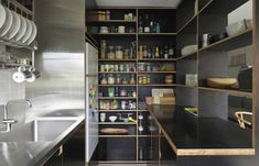 Potts Point Apartment / Anthony Gill Architects (6)