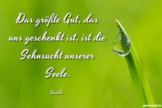 Das größte Gut, das uns geschenkt ist, ist die Sehnsucht unserer Seele. ... gefunden auf https://www.geheimekraft.de/spruch/787