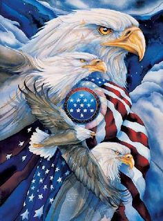 Eagles and flag. what a wonderful picture with the American Flag. The Eagles, Bald Eagles, American Pride, American Flag, Native American, Patriotic Pictures, Eagle Art, I Love America, Earth Design