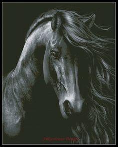 8acf80d29518e 1172 Best Women and Horses images in 2019 | Horses, Beautiful horses ...