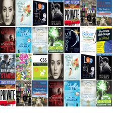 """Saturday, October 31, 2015: The Framingham Public Library has six new bestsellers and 14 other new books in the Top Choices section.   The new titles this week include """"25,"""" """"Def Leppard,"""" and """"The Wonderful Things You Will Be: A Growing-Up Poem."""""""