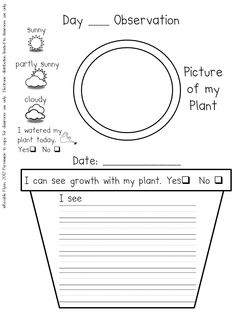 Plant journal-next year! First Grade Science, Primary Science, Kindergarten Science, Elementary Science, Science Classroom, Teaching Science, Science Activities, Kindergarten Journals, Prek Literacy