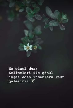Musa Akkaya, Güzel Sözler - Bestworld Tutorial and Ideas Sad Words, Cool Words, Insprational Quotes, Hurt Quotes, Literature Books, Allah Islam, Meaningful Words, Book Quotes, Karma