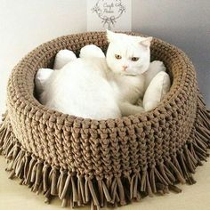 Crochet cat rug ideas for 2020 Crochet Home, Crochet Yarn, Easy Crochet, Animal Room, Cat Couch, Cat Rug, Pet Furniture, Diy Stuffed Animals, Crochet Animals